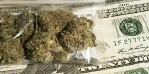 GreenWay Michigan Steady Flow on Michigan's Medical Marijuana Program